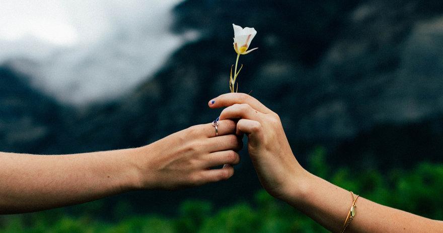צילום של גבר ואשה מחזיקים פרח (צילום: unsplash / CC0)